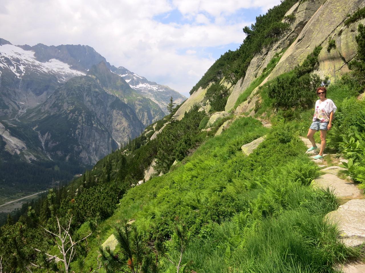 Der Weg führt stetig, aber selten steil der Bergflanke immer höher.